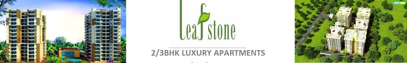 https://www.speedoring.com/leafstone chd home